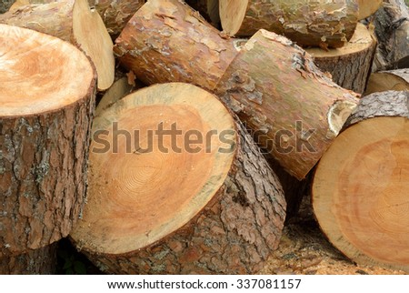 Timber industry and wood logging creative concept: heap of sawn pine wood logs with rough pine bark closeup view, industrial background - stock photo
