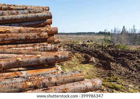 Timber located at a clear-felled in the forest - stock photo
