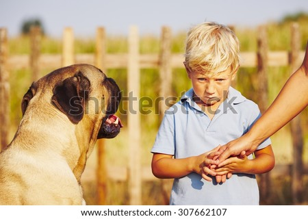 Timid boy is holding of the mother on the garden. - stock photo