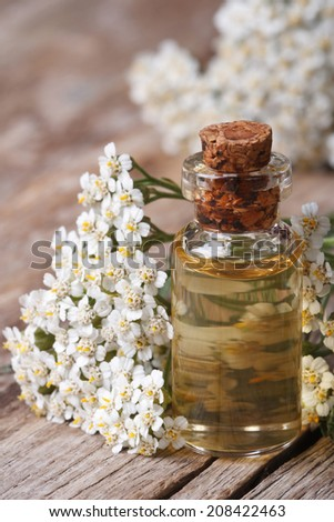 Tincture of yarrow in the bottle close-up on a background of flowers on the table. vertical  - stock photo