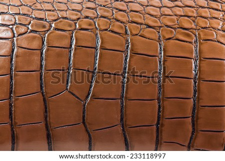 Tint brown crocodile skin texture as a background. - stock photo