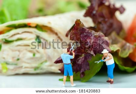 Tiny people cutting salad - stock photo