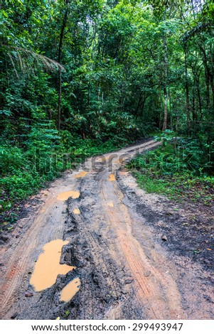 Tire tracks on a muddy road in the countryside, Routing traffic in the countryside, - stock photo