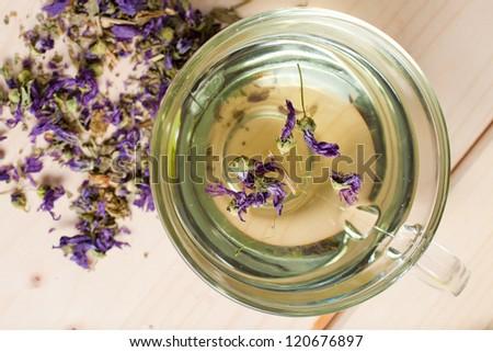 tisane with mallow flowers - stock photo