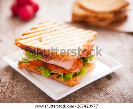Toast Sandwich served in the plate - stock photo