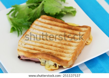 Toast with ham and cheese, closeup  - stock photo