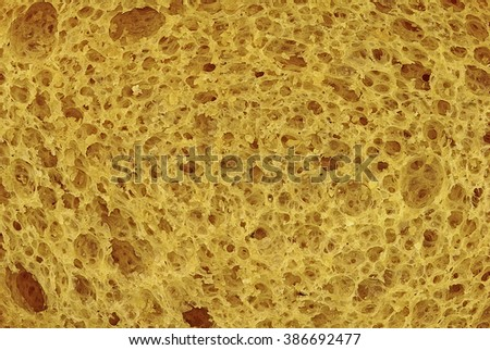 Toasted bread close up - stock photo