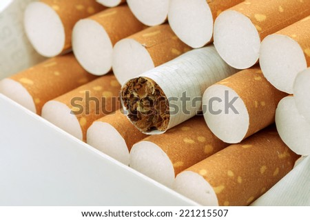 Tobacco in cigarettes with brown filter in pack close up - stock photo