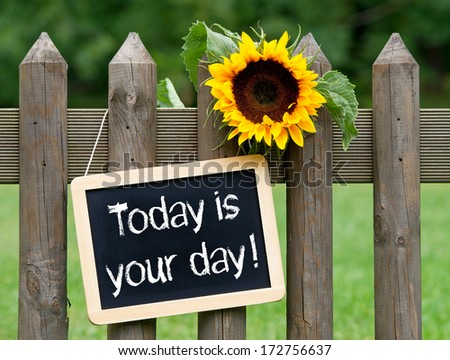 Today is your day ! - stock photo