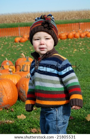 toddler at pumpkin farm - stock photo