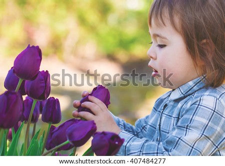 Toddler girl playing with purple tulips outside in spring - stock photo