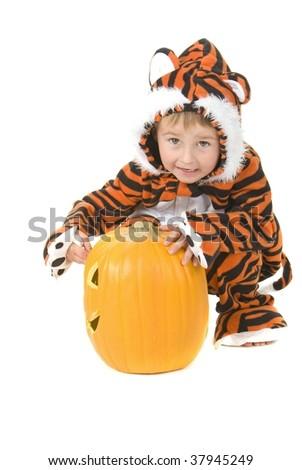 Toddler wears halloween tiger costume - stock photo