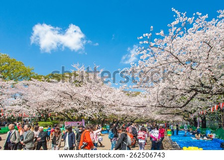 TOKYO, JAPAN - APRIL 4: Cherry blossoms festival in Ueno Park on April 4, 2014 in Tokyo, Japan. Viewing cherry blossom is a Japanese custom. Ueno Park was Japan's first public park, opened in 1873. - stock photo