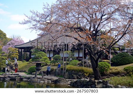 TOKYO, JAPAN - APRIL 1 : Denpo-in in Asakusa during cherry blossom on 1 April 2015. Tokyo, Japan. Denpo-in is one os the most beautiful gardens in Tokyo. - stock photo