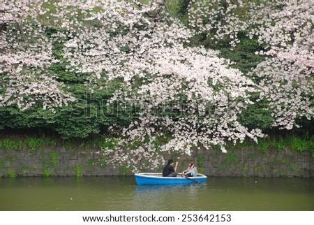 TOKYO, JAPAN - APRIL 4 : Lovers in boat watching sakura at Chidorigafuchi in spring season taken on April 4, 2009 in Tokyo, Japan.  - stock photo