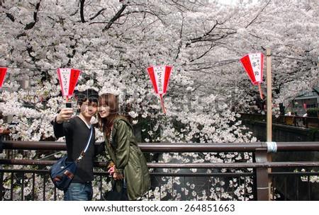 TOKYO, JAPAN - APRIL 5: People enjoy sakura at Nagameguro canal taken April 5, 2009 in Tokyo. Nagameguro is popular sakura spot in Tokyo. - stock photo