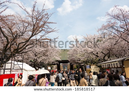 TOKYO, JAPAN - APRIL 2 2014: Visitors enjoy cherry blossom in Yasukuni Shrine.Yasukuni Shrine is visited by up to 300 thousand people for annual Sakura Festival. - stock photo