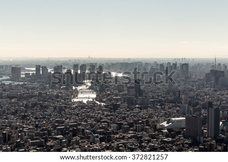 Tokyo skyline view from a high viewpoint, Japan. Skyline of the city in a clear sky day. - stock photo