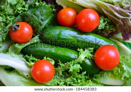 tomato and cucumber with many kind of salads - stock photo