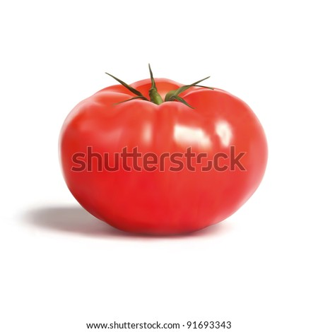 Tomato Illustration, Organic Farmhouse Style Tomato - stock photo
