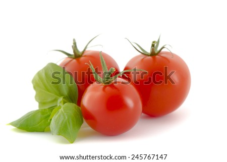tomatoes and basil - stock photo