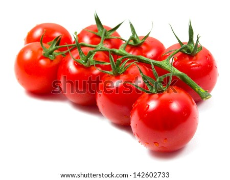 Tomatoes cherry branch isolated on white background - stock photo