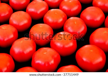 Tomatoes in a row at the market - stock photo