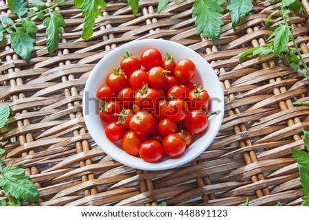 Tomatoes in bowl, ripe and red harvest, on wicker picnic basket, with tomato leaves. - stock photo