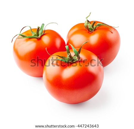 Tomatoes isolated on white background - stock photo