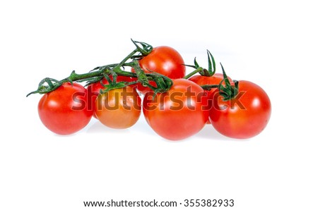 tomatoes on the vine isolated on white  - stock photo