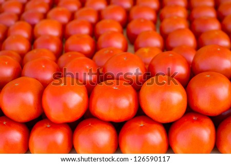 tomatoes vegetables stacked in a row on market display - stock photo