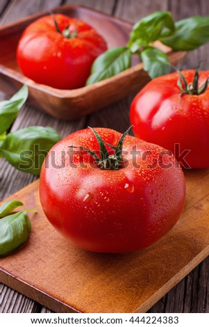 Tomatoes with basil  - stock photo
