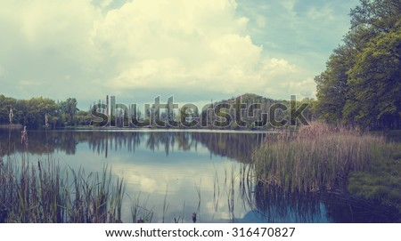 Toned landscape at the lake with reeds and mountains - stock photo