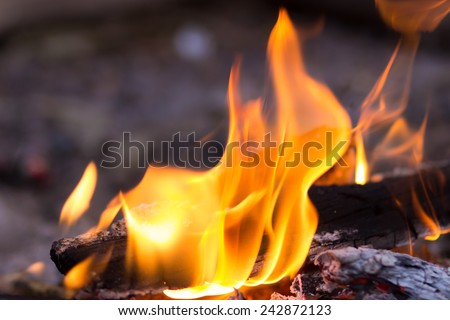 Tongues of flame fire close-up - stock photo