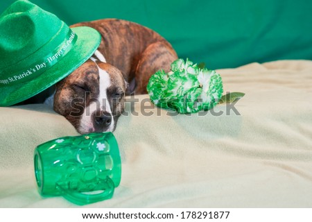 Too Much Partying - stock photo