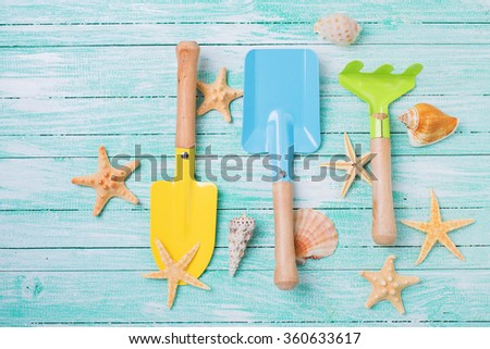 Tools for kids for playing in sand  and sea object on turquoise  painted wooden planks. Place for text. Vacation background. - stock photo