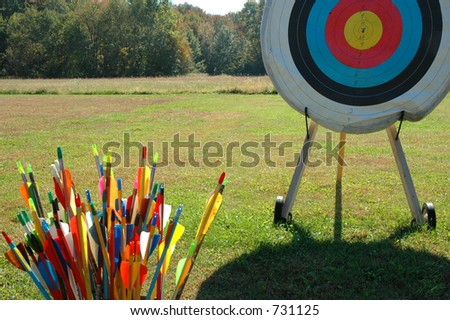 Tools for the Target - stock photo