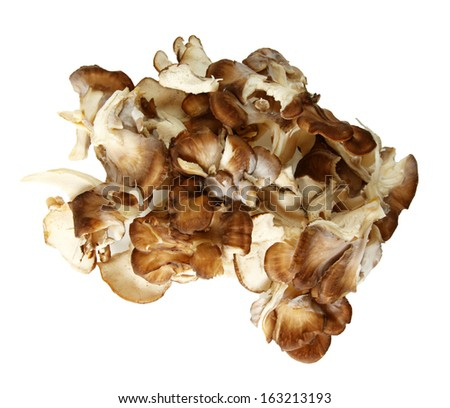 Top Down View Of Maitake Mushroom Pieces Over White Background - stock photo