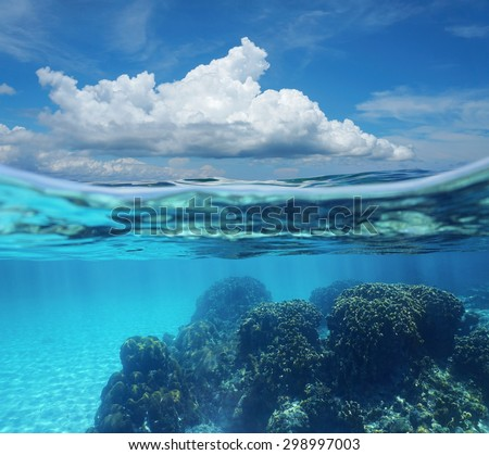 Top half with blue sky and cloud, and underwater split by waterline, a coral reef with sandy seabed, Caribbean sea, Costa Rica - stock photo
