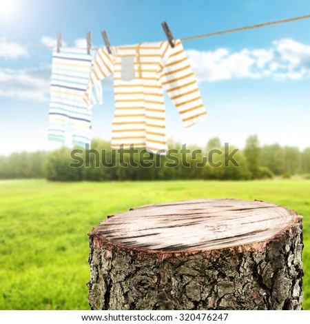 top of cut tree and landscape with grass and sky with rop of clothes  - stock photo
