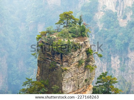 Top of rock column (Avatar rocks). Zhangjiajie National Forest Park was officially recognized as a UNESCO World Heritage Site - China - stock photo