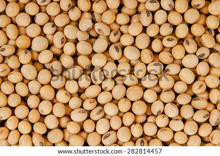 Top view background of soybeans - stock photo
