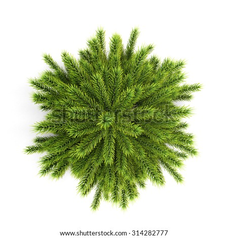 Top view christmas tree without ornaments isolated on white background. 3d illustration. - stock photo