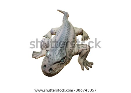 Top view model of a large-headed Eryops displays in an Asian Natural History museum. The Eryops was a prehistoric amphibian genera that lived during the early Permian and late Carboniferous Period. - stock photo