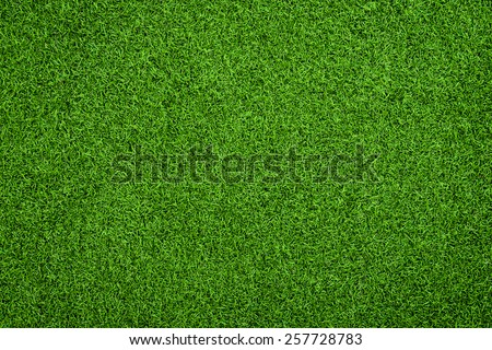 Top view of Artificial Grass - stock photo