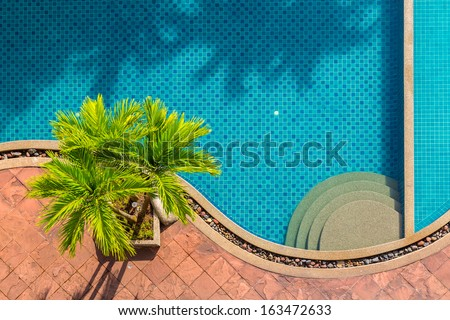 top view of beautiful swimming pool  - stock photo