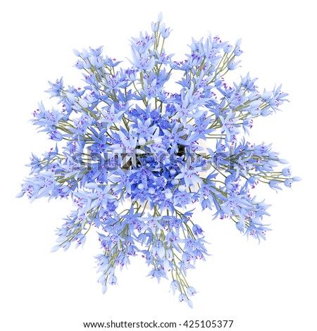 top view of blue flowers in vase isolated on white background. 3d illustration - stock photo