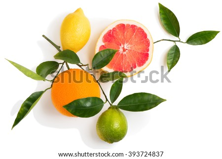 Top view of citrus fruits (grapefruit, orange, lemon, lime) on a branch with green leaves isolated on white background. - stock photo