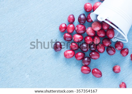 Top view of fresh cranberries in a white fallen over bucket on a blue wooden table. - stock photo