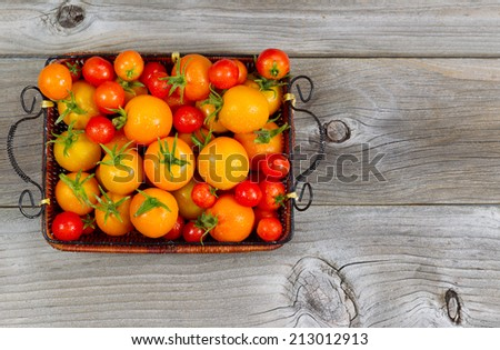 Top view of garden fresh tomatoes in basket on rustic wooden boards  - stock photo